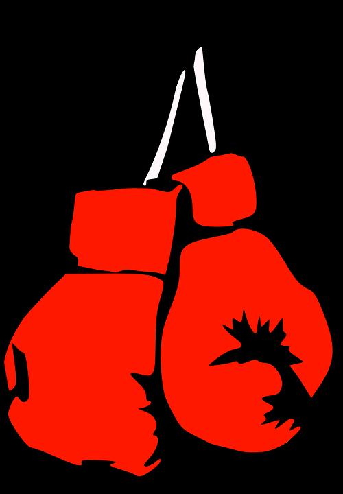 boks makinası-eldiveni